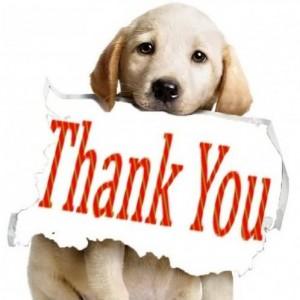 Thank-you-dog-300x300